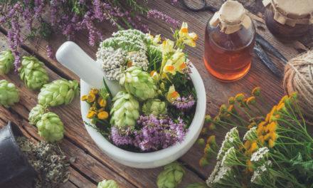 Revue en détail des herbes aromatiques