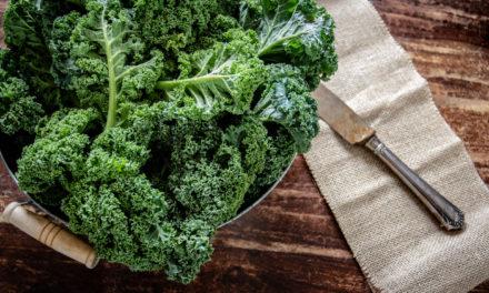 Le chou kale et ses vertus pour la santé